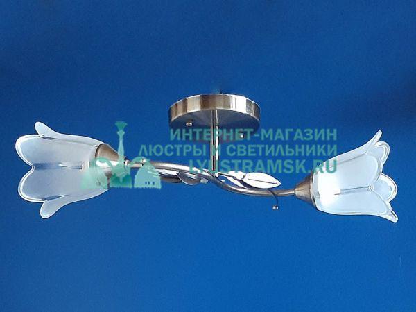 Люстра потолочная LyustraMsk. ЛС 744 на 2 плафона, бронза.