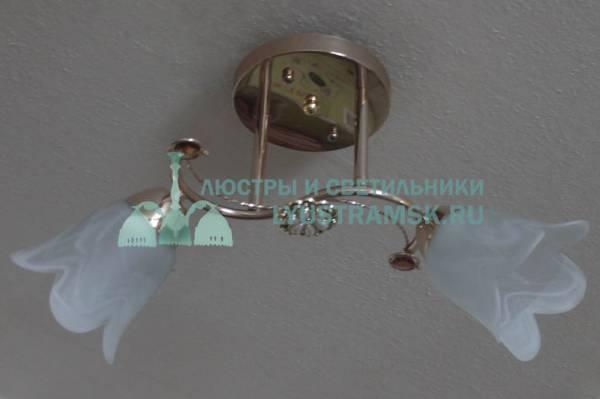 Люстра потолочная LyustraMsk ЛС 539 на 2 плафона золото