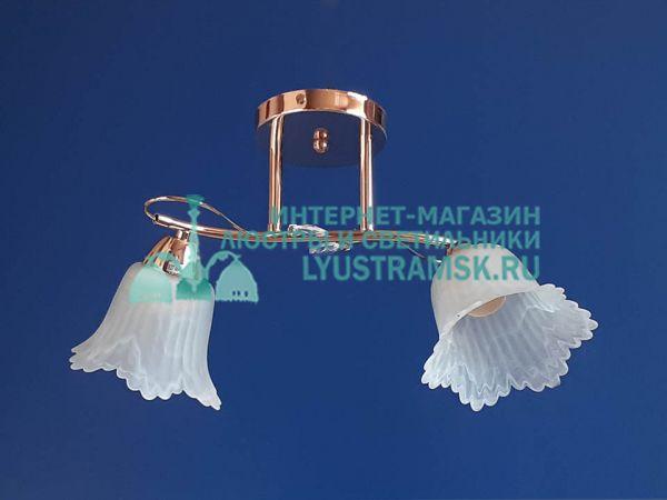 Люстра потолочная LyustraMsk ЛС 187 на 2 плафона золото